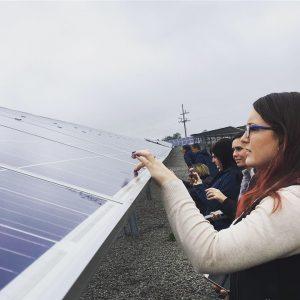 Green Check Businesses Tour Solar Farm